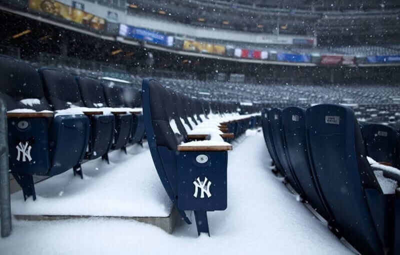 Can I Use My Bat In Cold Weather